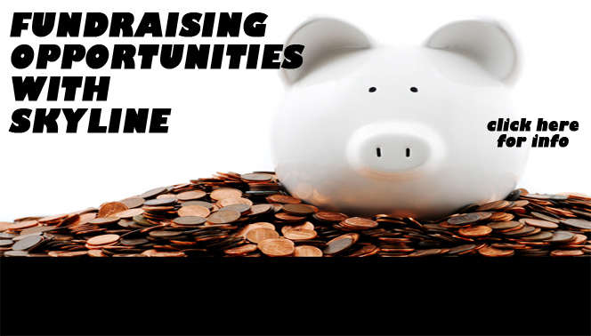 Fundraising with Skyline